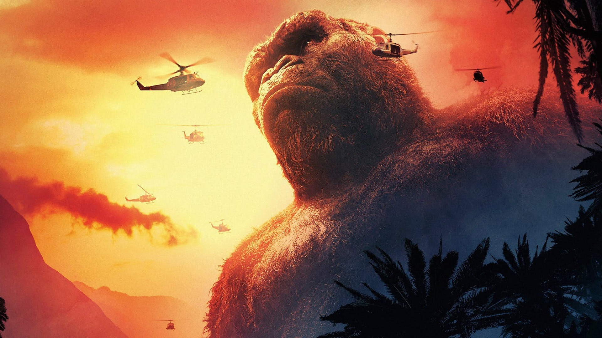 "Cameras roll on the Gold Coast for the next big-screen Adventure ""Godsilla Vs. Kong""!"