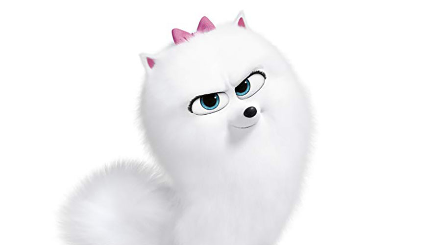 Check out this new sneak peak from The Secret Life of Pets 2 – Cat Lessons!