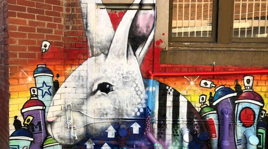 The Brisbane Street Art Festival 2019 is returning this May!