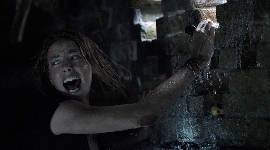 CRAWL | Certified FRESH! Plus, a Brand New Clip
