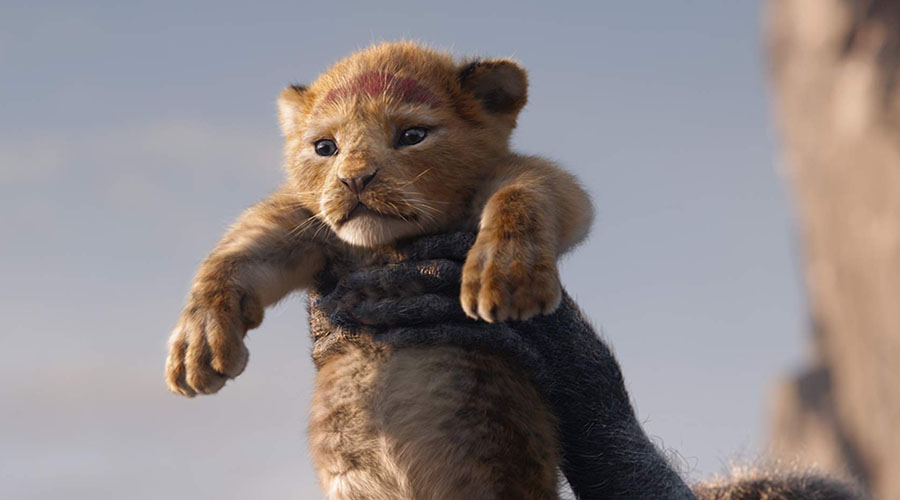 Watch the trailer for The Lion King - in cinemas July 17!