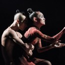 Yang Liping's Rite of Spring is coming to the Brisbane Festival!