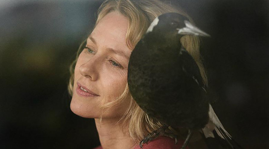Here is the first look image from the upcoming Australian film Penguin Bloom