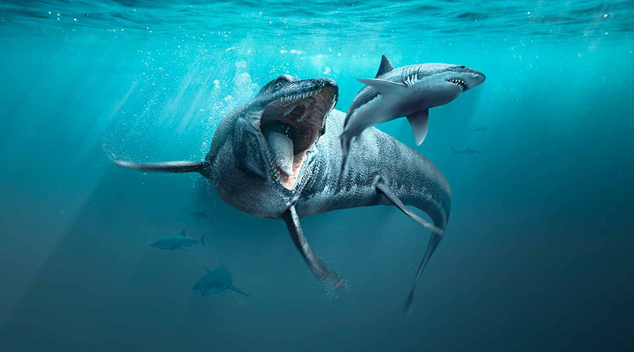 Sea Monsters: Prehistoric Ocean Predators