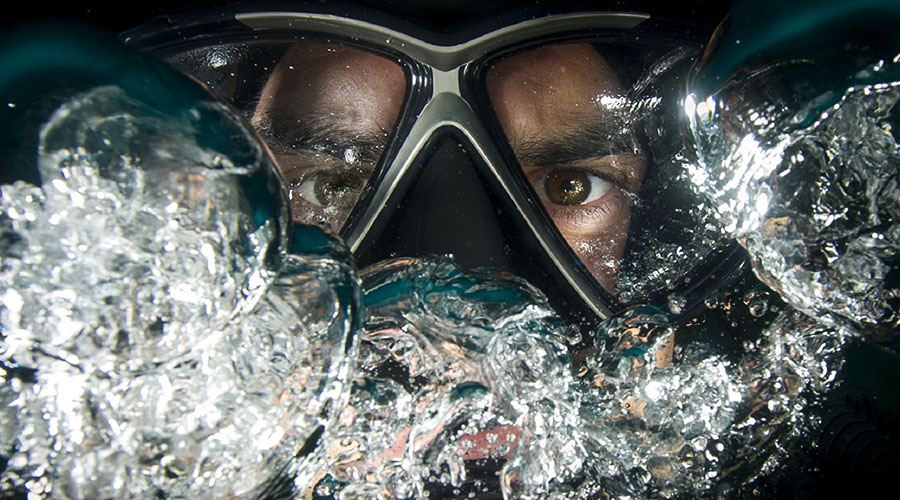 Frogman is coming to the Brisbane Powerhouse