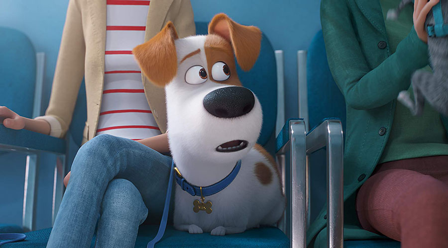 The Secret Life of Pets returns - watch the trailer now!