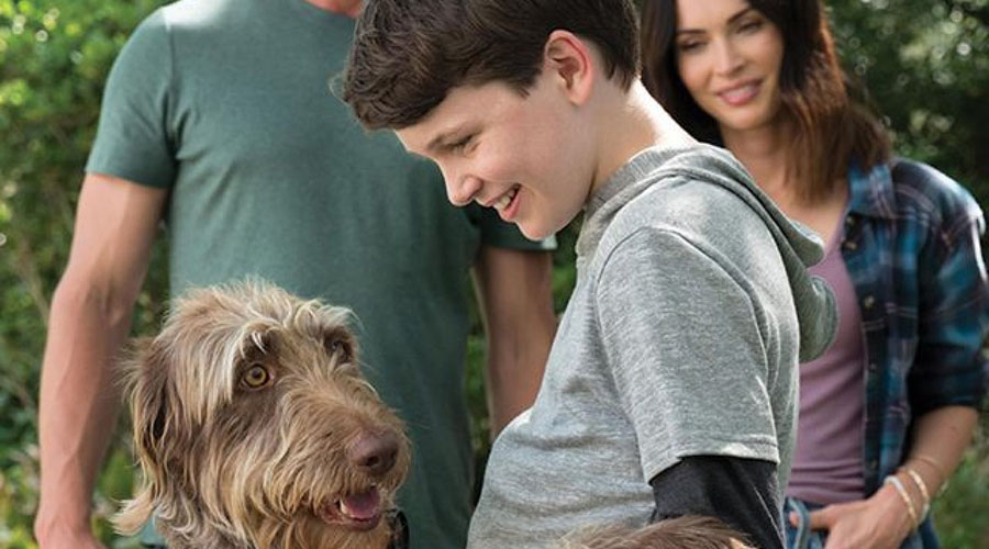 Watch the trailer for Think like a Dog!
