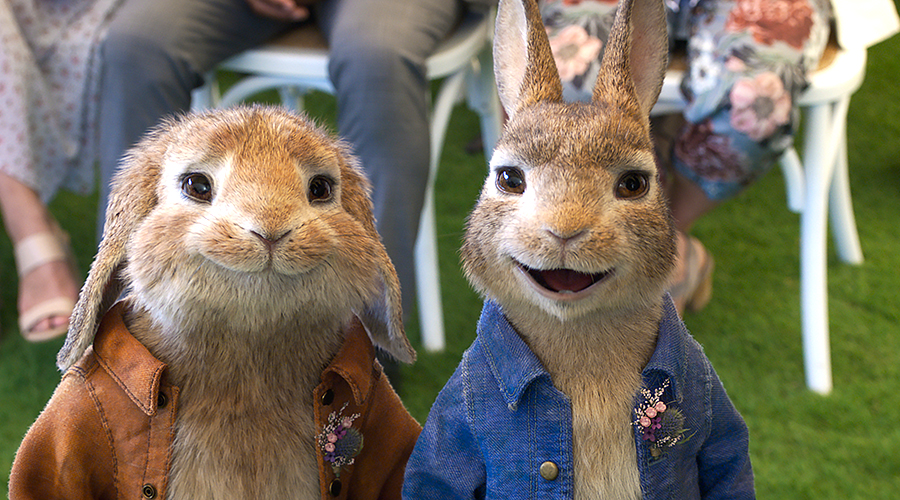 Peter Rabbit 2 Movie Review