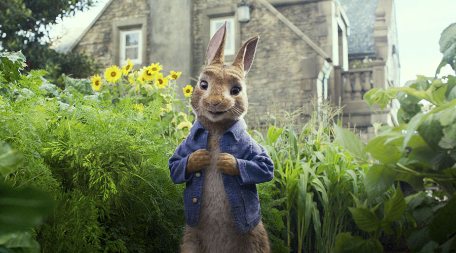 Watch the trailer for Peter Rabbit 2 - bounding into cinemas March 25!