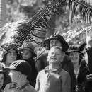 Entwined: plants and people Exhibition at the SLQ